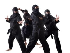 Howste Ninjas Working For You